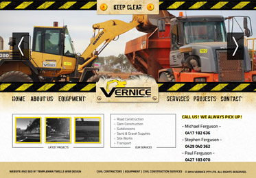 Screenshot of the Vernice Website